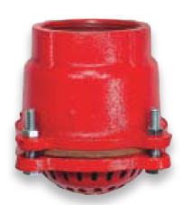 Cast Iron Foot Valve Strainer 2-1/2""